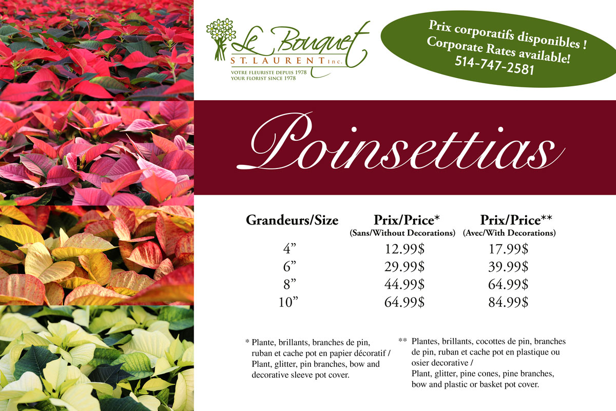 price sheet for Le Bouquet St Laurent Poinsettias