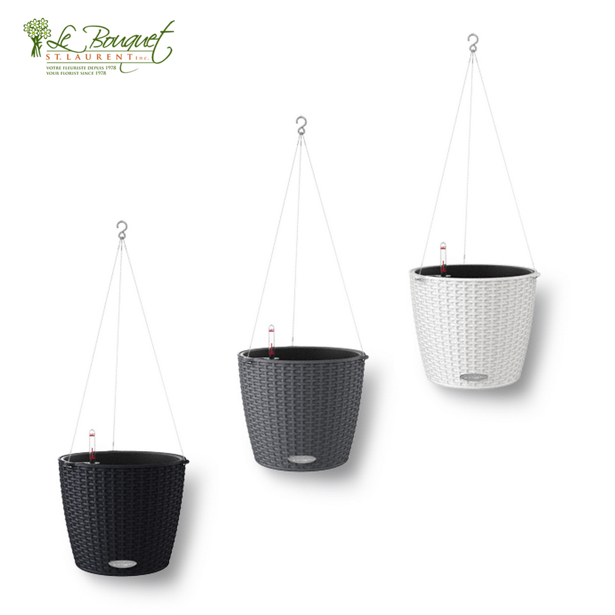 Nido collection self watering pots by Lechuza sold by Montreal florist Le Bouquet St laurent