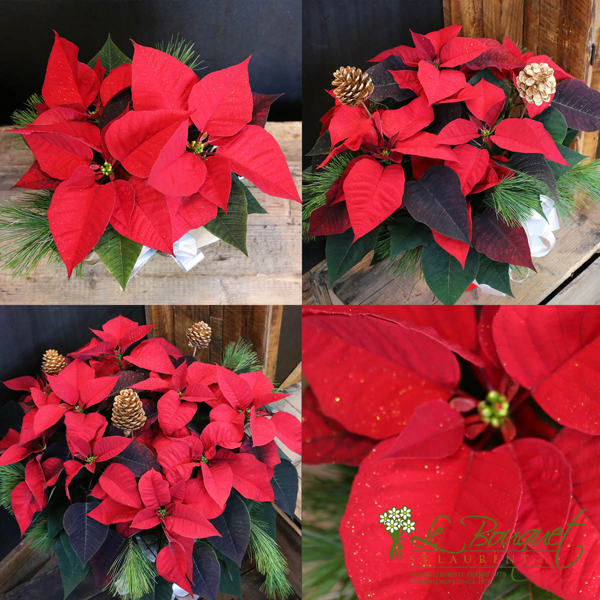small medium and large poinsettias with decorations from Montreal fleuriste Le Bouquet St Laurent
