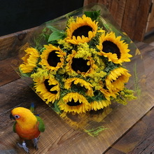 mango and sunflowers